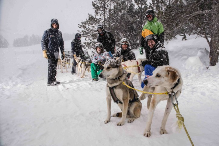 Dog sledding in Andorra