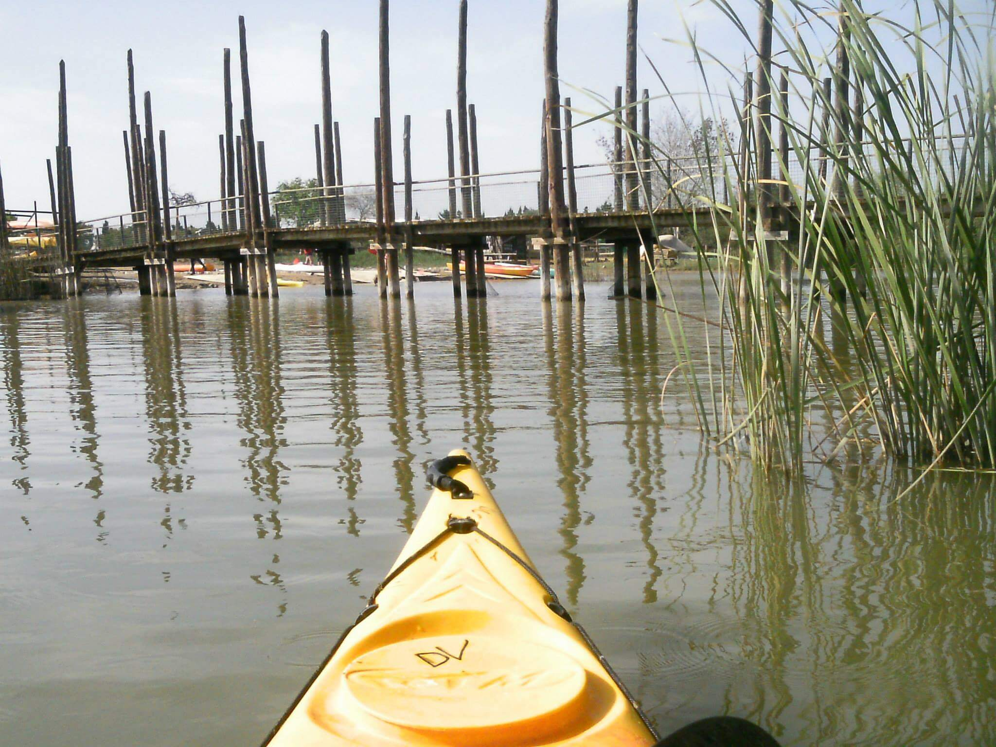 Kayak tour in Ebro land