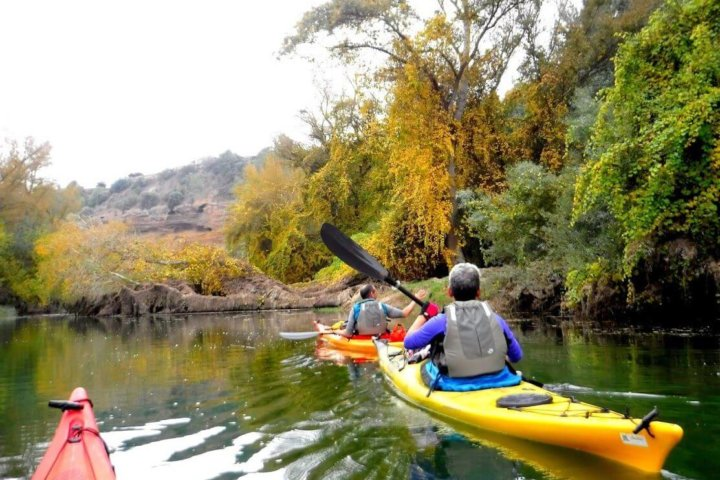 Offer of kayak and Adventure Park